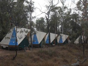 tents at undara volcanic national park