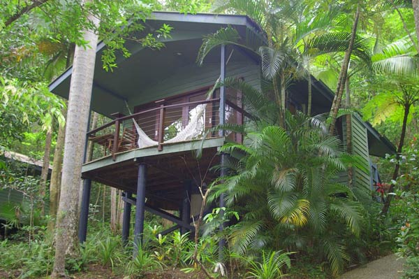 daintree rainforest treehouses  tropical treehouse
