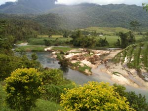 view of babinda kayaks
