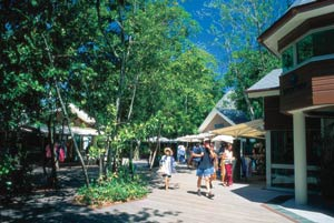 picture of green island shops