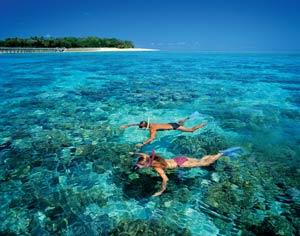 snorkeling great barrier reef green island