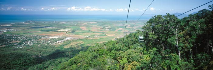Cairns daytrips to Skyrail