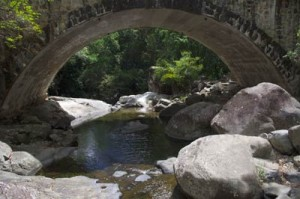 Paluma Park bridge