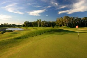 palmer sea reef golf course