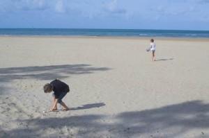 Cooktown-Finch-Bay-Beach