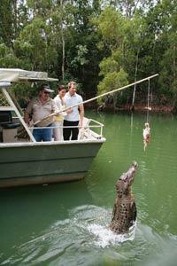 hartleys crocodile farm