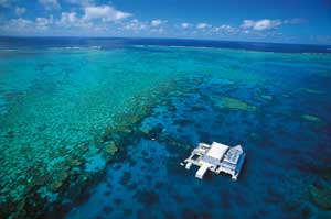 piicture of pontoon on the great barrier reef
