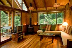 interior of canopy rainforest treehouse