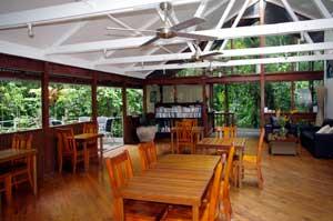 cycad restaurant daintree