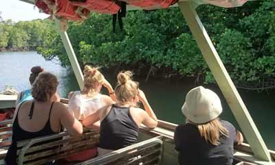 cape trib crocodile cruise
