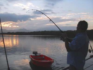 hinchinbrook fishing