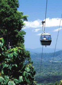 cairns skyrail rainforest cableway