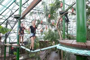cairns zoom ropes course