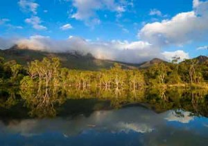 little ramsay bay hinchinbrook