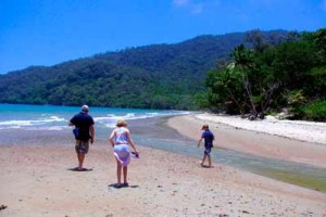 cow bay beach daintree