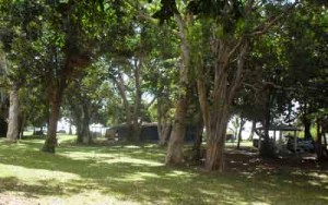 bramston beach campground