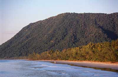 noah beach cape tribulation