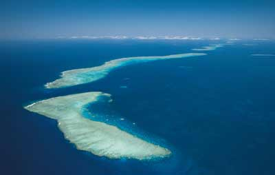 picture of ribbon reefs