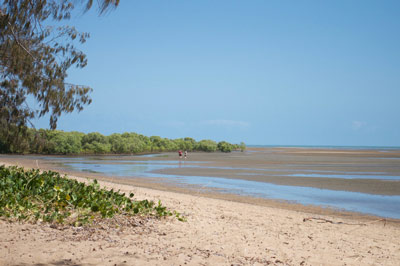 bushland beach townsville beaches
