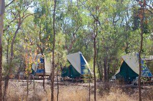 swag tents undara
