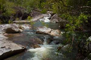 picture of davies creek kuranda