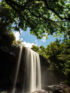 picture of zillie falls, cairns tablelands