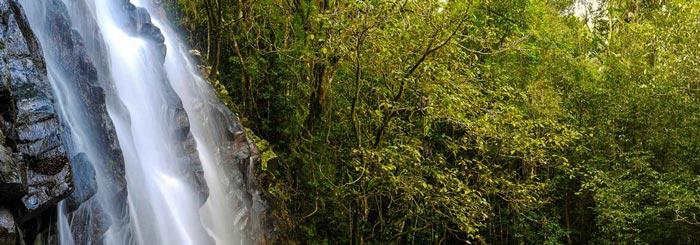 Best Cairns Tablelands Waterfalls