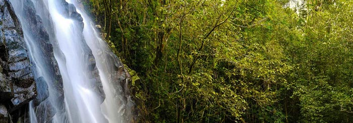 Ellinjaa Falls, Cairns Tablelands waterfalls circuit