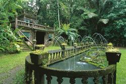 gardens at paronella park
