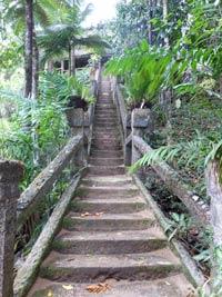 paronella park gand staircase