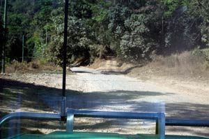 cairns to cooktown road
