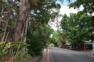 kuranda australia