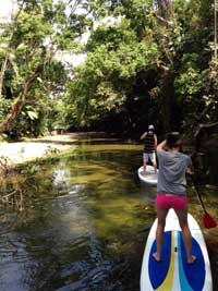 windswell paddle boarding port douglas