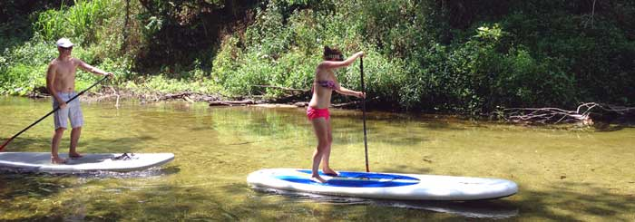 stand up paddle boading mossman river daintree rainforest