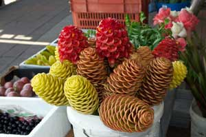 picture of ginger flowers