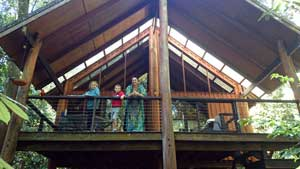 tarzali treehouses balcony
