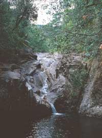 araluen falls one of the waterholes in eungella national park