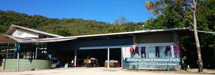 Orpheus Island Research Station: Studying the Great Barrier Reef