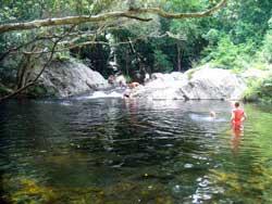 secret swim hole mulgrave river near cairns
