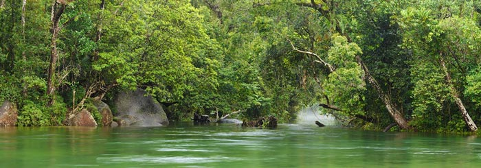 picture of pool at babinda boulders