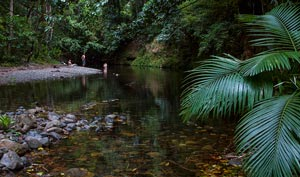 picture of emmagen pool, cape trib