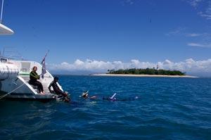 snorkeling great barrier reef low isles