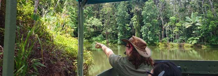 rainforestation nature park army duck