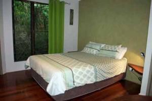 rainforest cabin mission beach
