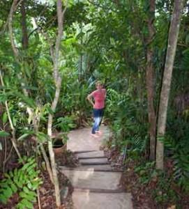 rainforest retreat mission beach