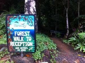 sanctuary retreat rainforest