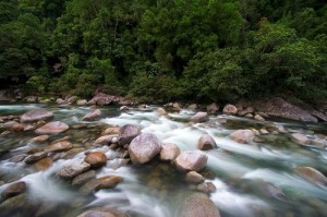 nq creek