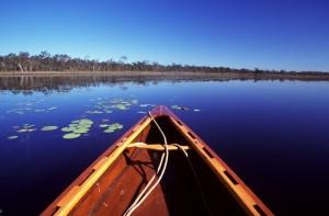mareeba wetlands cruise