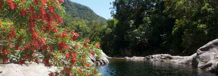 Behana Gorge: One of FNQ's Best Swim Holes