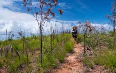 walking the thorsborne trail